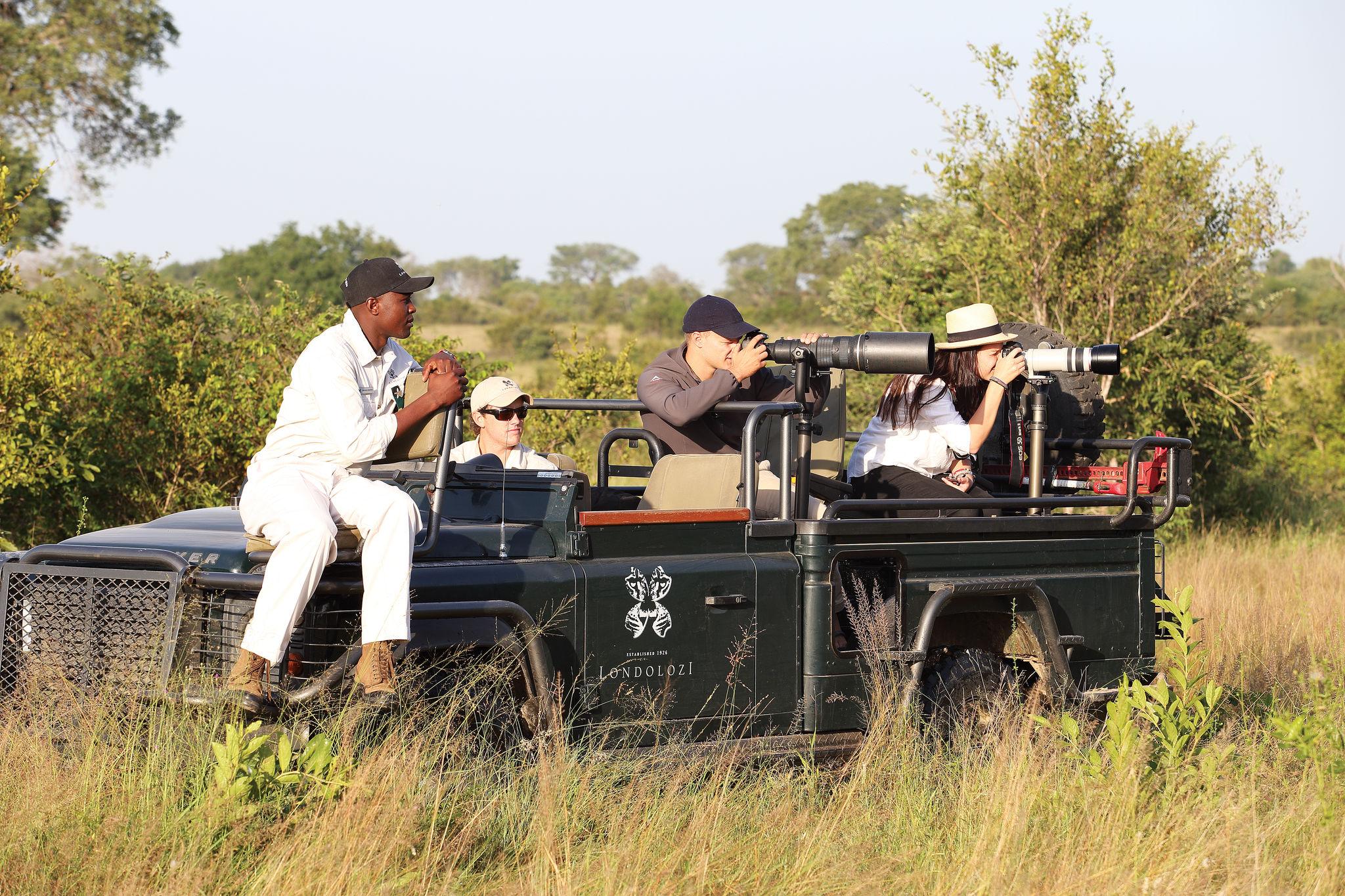 Un safari